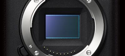 AF in Focus Magnifier
